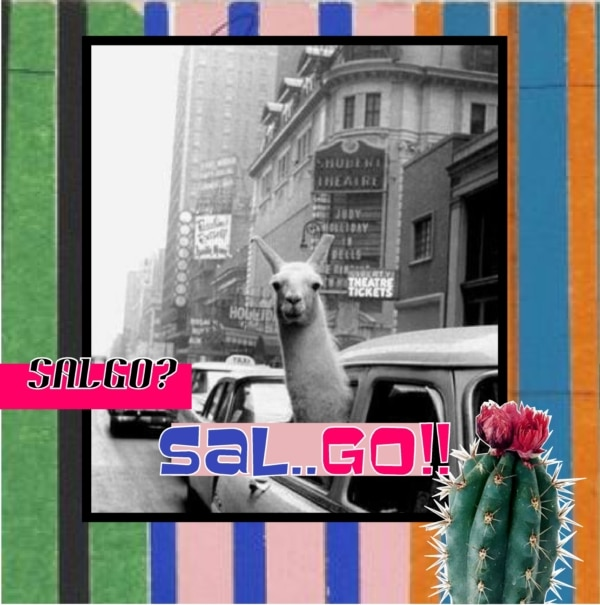 Salgosal.go